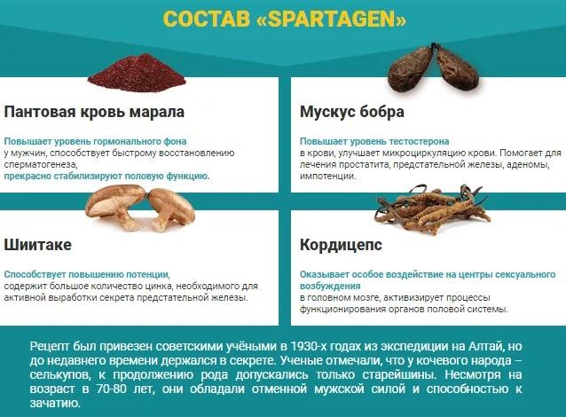 состав капсул Спартаген