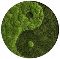 Круглая картина Инь Янь из Кочек и Плоского мха 80см диаметр. Кашпо Панно из мха