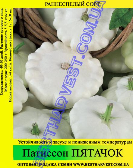 Семена патиссона «Пятачок» 0.5 кг