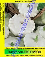 Семена патиссона Пятачок 0,5кг