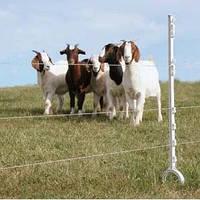 Електропастух Corral NA200 для кіз (комплект на 500 м в 4 лінії провідника)