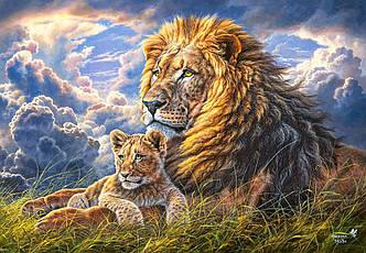 Пазлы Castorland 1000 элементов, 68х47 см, в коробке, Семейство львов