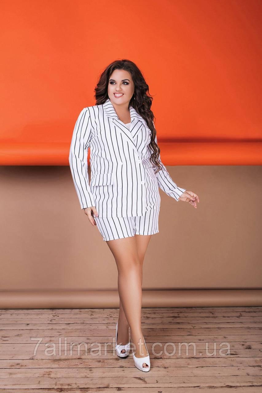 """Костюм двійка жіночий шорти+піджак, розміри 42-56 """"VLADA"""" купити недорого від прямого постачальника"""