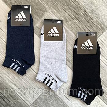 Носки мужские демисезонные хлопок спортивные Adidas, Athletic Sports, короткие, ассорти, 06205