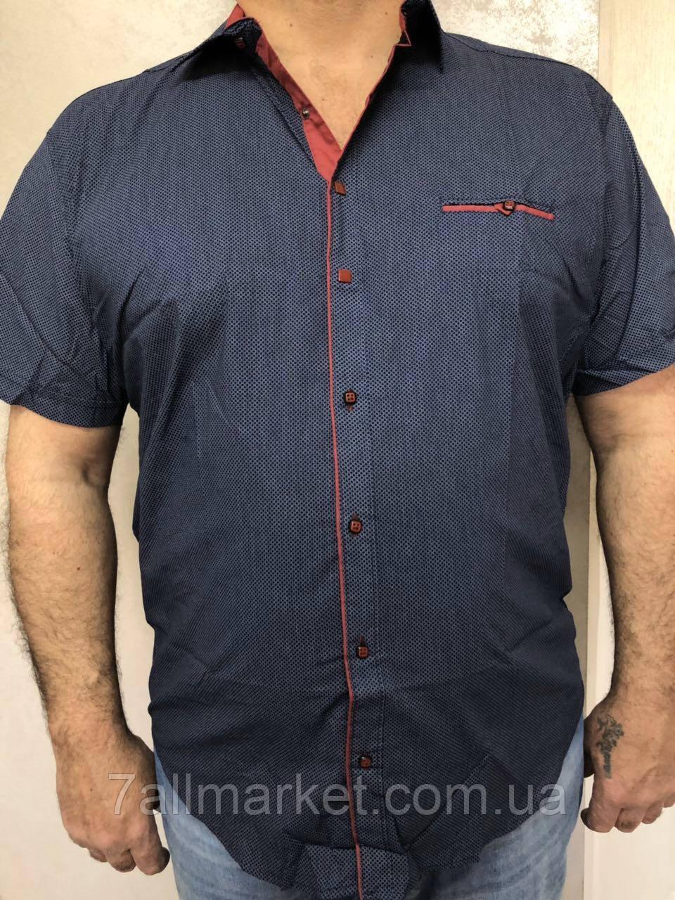 """Рубашка мужская батал короткий рукав, р-ры 3XL-6XL""""EMRE"""" купить недорого от прямого поставщика"""