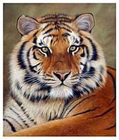 40х50 см алмазная мозаика ТИГР вышивка картина мозаїка діамантова вишивка тигрица 40 х 50