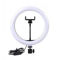 Кільцева лампа Ring Fill Light SL300 30 див., без штатива., фото 1