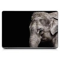 Необычная декоративная наклейка стикер на крышку ноутбука Elephant Матовая