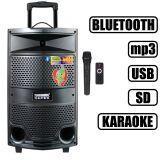 Портативная акустика Temeisheng A10-33/120W микрофон (USB/FM/Bluetooth)