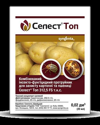 Инсекто-фунгицидный протравитель Селест Топ (20 мл) — защита картофеля и пшеницы.1,2,3, фото 2