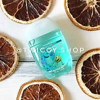 Санитайзер для рук PocketBac Bubble Gum Strawberry WashYourBody
