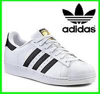 Кроссовки Adidas Superstar Белые Адидас Суперстар (размеры: 40,41,42,43,44,45,46) Видео Обзор