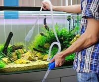 «Левомицетин» для рыб