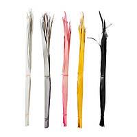 ТОРКА Сухой букет,пальмовый лист разные цвета, 10 шт/комплект