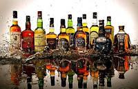 Алкоголь : Вино Виски Шампанское
