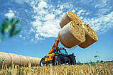 Телескопічний навантажувач DIECI AGRI FARMER 28.9 100 к.с. 79,5 KW GD, фото 7