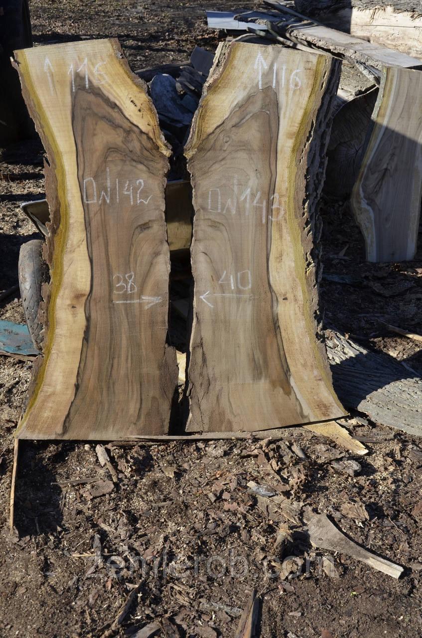 Слэб дерева, поперечный и продольный срез дерева