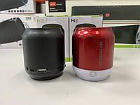 Портативная акустическая колонка Hopestar H8 (Bluetooth, FM, MP3, AUX, Mic)