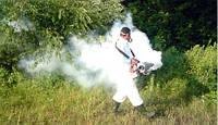 Уничтожение насекомых - дезинсекция