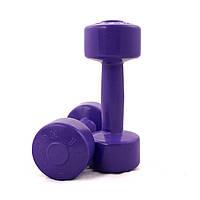 Гантели для фитнеса ODI Титан 2 шт по 1.5 кг (374994)