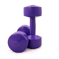 Гантели для фитнеса ODI Титан 2 шт по 2.5 кг (374996)