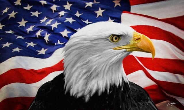 американский символ,символика сша,орел символ сша,орел символ свободы, успеха,богатства