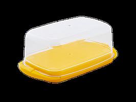 Маслянка (тобто жовта)