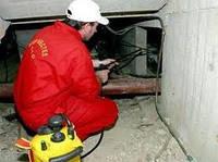 Уничтожение крыс, мышей - дератизация