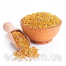 Горчица желтая (сидерат) 1кг, семена Яскрава