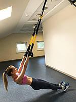 Тренировочные петли trx (трх тренажер для фитнеса, турника) OSPORT Lite (FI-0037)