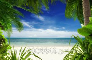 Скинали Пляж, Пальмы, вид на море - стекло с фотопечатью