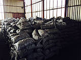 Горючий древесный уголь из граба продам Житомирская обл., фото 6