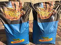 Семена кукурузы DKC 3472 / ДКС3472 ФАО 270