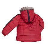 Зимняя куртка для мальчика Peluche&Tartine F19MS55EG OldCarrot. Размеры 3 - 8 лет., фото 2