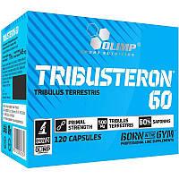 Стимулятор тестостерона Olimp Tribusteron 60, 120 капсул