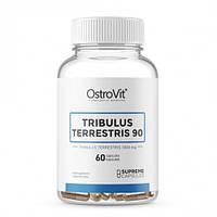 Стимулятор тестостерона OstroVit Tribulus Terrestris 90, 60 капсул
