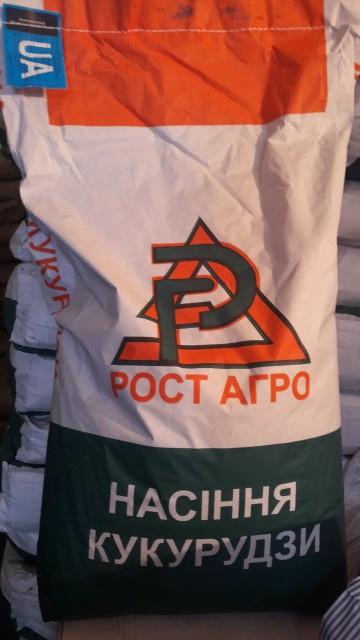 Семена кукурузы ДН Рубин ФАО 290, Рост Агро