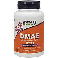 Натуральная добавка NOW DMAE 250 mg, 100 вегакапсул