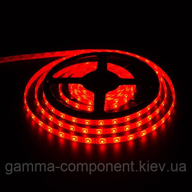Светодиодная лента SMD 5050 (60 LED/м), красный, IP20, 12В - бобины от 5 метров