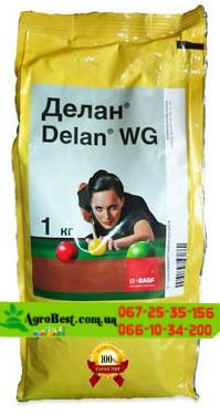 Фунгицид Делан 1кг для  яблуні, персика та винограду