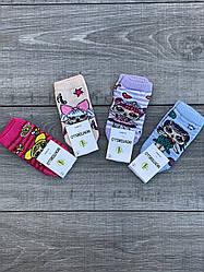 Шкарпетки дитячі Montebello, носки для дівчаток з ляльками LOL, 12 пар в уп. мікс 4 кольорів, 5 років
