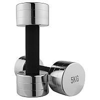 Гантель для фитнеса 5кг (1шт) хром 80034C-5
