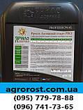 Стимулятор Роста АКТИВНЫЙ СТАРТ для обработки семян КУКУРУЗЫ перед посевом с гуматами, фото 3