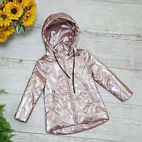 Куртка Для Девочки Верхняя Детская Одежда Kids Модель M-251 Цвет Розовый Размер 80