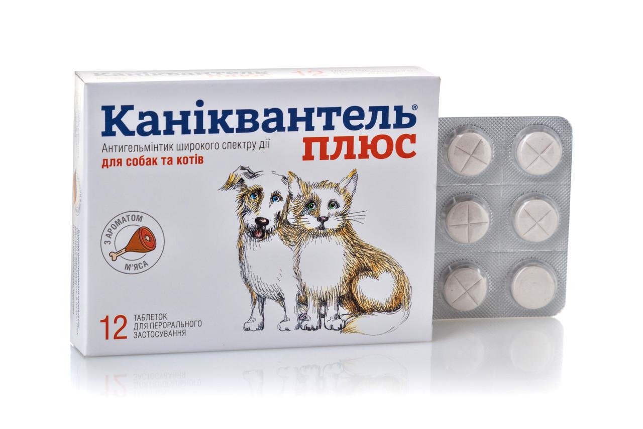 Таблетки від глистів антигельмінтик Каниквантель плюс Haupt Pharma для собак і кішок 1 табл.