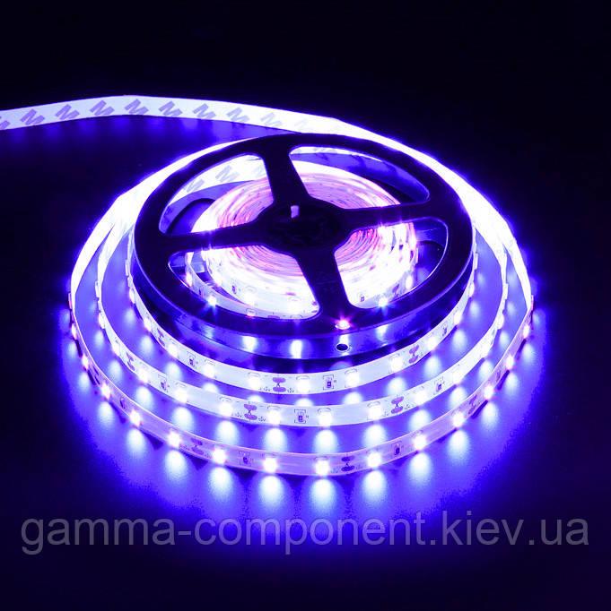 Світлодіодна стрічка 12В AVT PROFESSIONAL SMD 3528 (60 LED/м), синій, IP20 - бобіни від 5 метрів