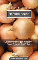 Високоврожайний сорт ріпчастої цибулі Цибуля Робот (Райнсбургер) (PPZ Голландія 1г), импортные семена лука