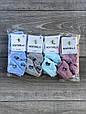 Шкарпетки з котиками дитячі люрекс бамбук Montebello для дівчаток 3,5,7,9,11 років 12 шт в уп мікс кольорів, фото 2