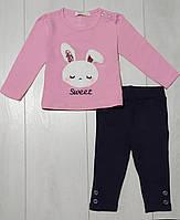 Комплект для девочки демисезонный, футболка длинный рукав+лосины (нашивка Зайчик), Breeze
