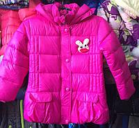 Детская демисезонная куртка оптом на девочку 3-7 лет, фото 1